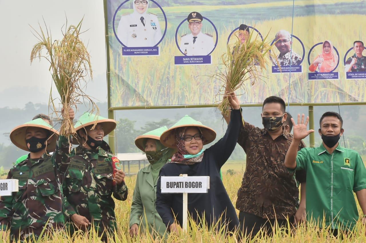 Bupati Bogor Hadiri Panen Raya di Kecamatan Tanjungsari