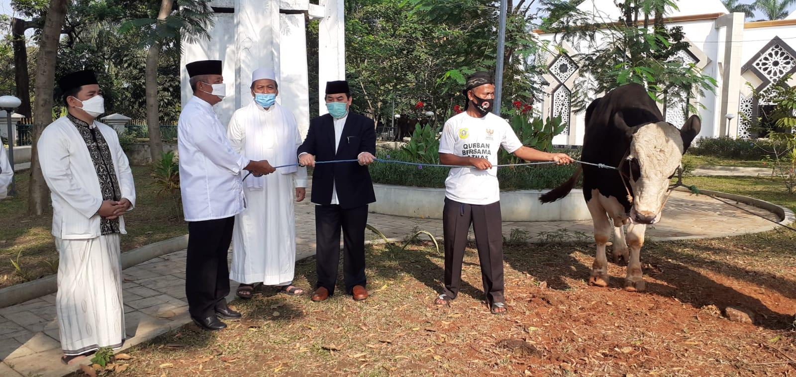 Bupati Bogor Ade Yasin Serahkan Dua Sapi Kurban Limosin ke Masjid Baitul Faizin
